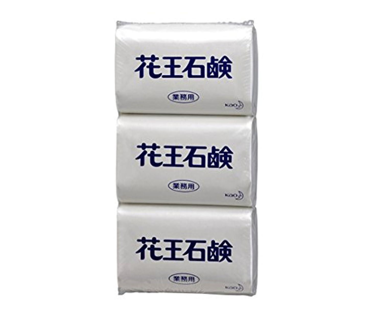 等価測定可能フレア花王1-2756-11石鹸85G