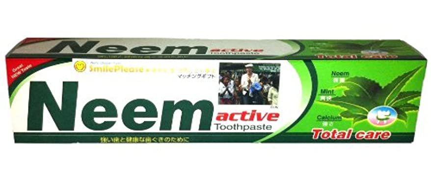 常識擁する船尾ニーム(Neem) 歯磨き粉 200g