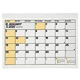 能率 NOLTY 2020年 カレンダー 壁掛け 6 A3 C111 AZ