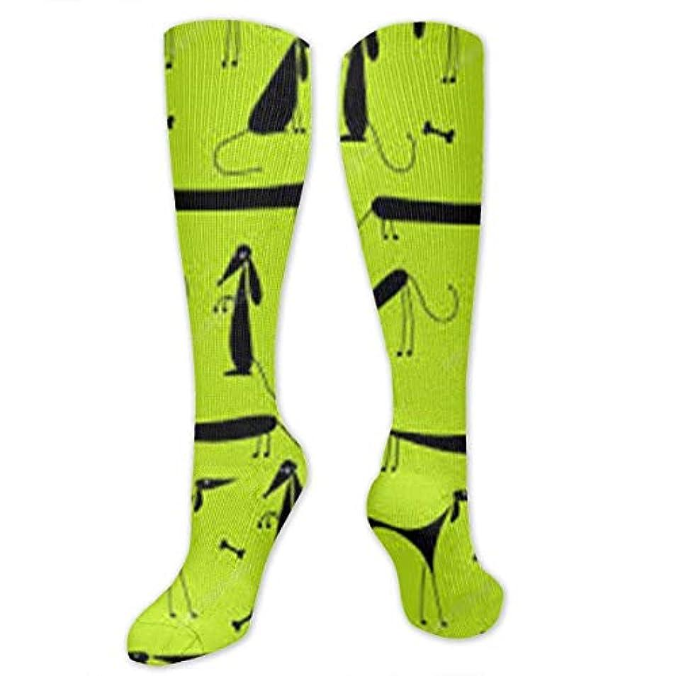 マディソン周囲魅力靴下,ストッキング,野生のジョーカー,実際,秋の本質,冬必須,サマーウェア&RBXAA Funny Dogs Socks Women's Winter Cotton Long Tube Socks Knee High Graduated...