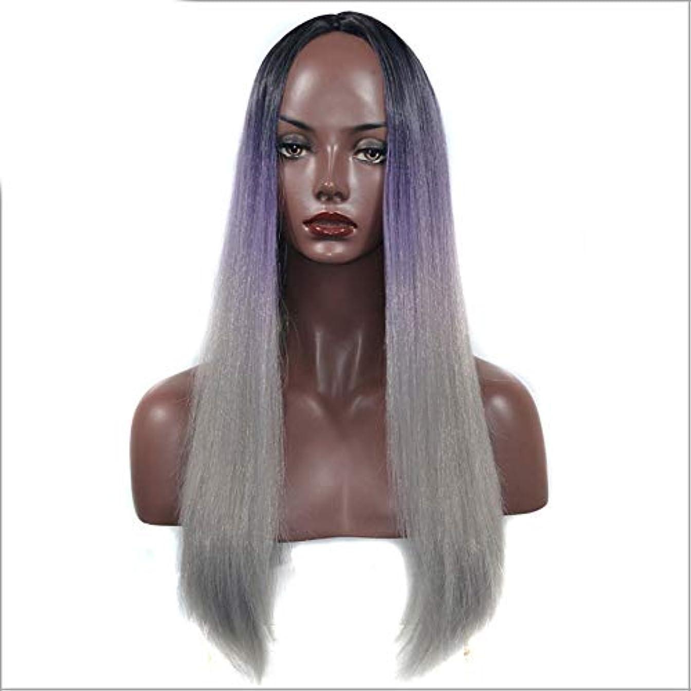 小説致命的な永遠のWASAIO 女性用ナチュラルウィッグブラックパープルグレーロングストレートヘアミドルパートアクセサリースタイル交換用コスプレパーティードレス (色 : Black purple gray, サイズ : 60cm)