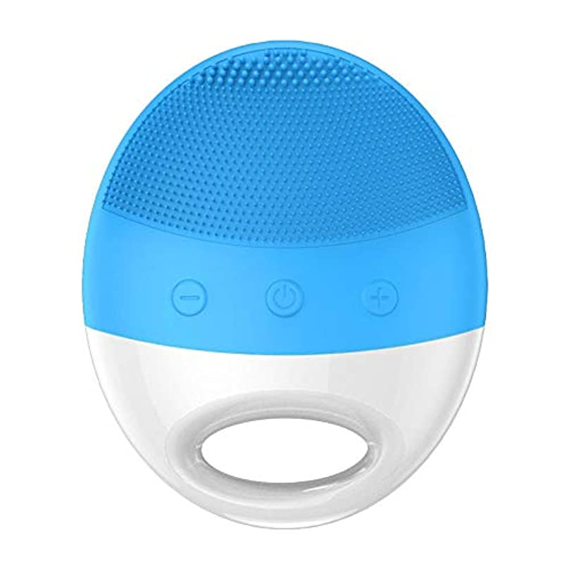 退屈免疫新年超音波美の洗浄器械の電気シリコーンの洗浄のアーティファクトの気孔のクリーニングの器械 (Color : Blue)