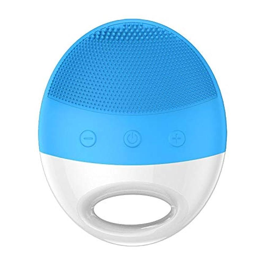 マンハッタン彼の品揃え超音波美の洗浄器械の電気シリコーンの洗浄のアーティファクトの気孔のクリーニングの器械 (Color : Blue)
