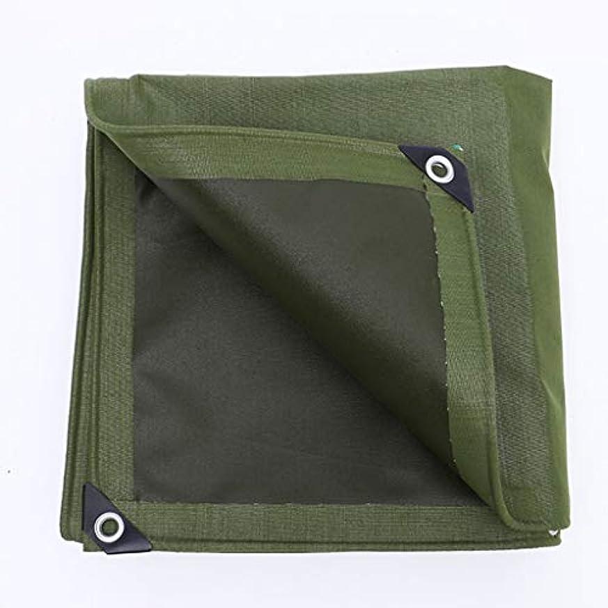 フィドル驚いた着替えるアウトドア 防水シートオーニング、シェルター厚手キャンバスオーニングカーターポリンサンバイザー屋外用防水シート耐摩耗性引裂き性高品質 テント (Color : Green, Size : 400*500cm)