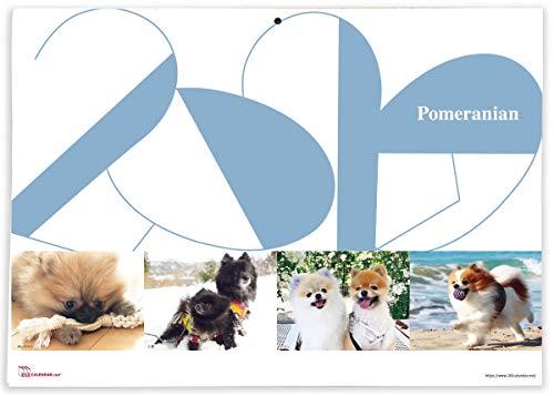 365カレンダー 2020年 ポメラニアン カレンダー 壁掛け 卓上付き 2020-011