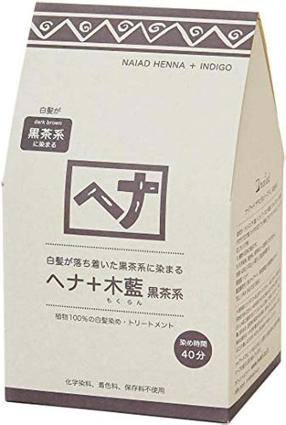 溶けたベンチ睡眠Naiad(ナイアード) ヘナ+木藍 黒茶系 400g