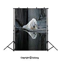背景布 撮影用 クマ、クリームグレーブラック背景シート 厚地 不透明 プロ スタジオ背景スクリーンシート 写真、ビデオとテレビに対応 ポリエステル サイズ150*210cm