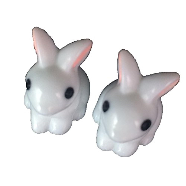 FUNSHOWCASE ジオラマ キット おもちゃ 白 バニー ウサギ 手作り ミニチュア インテリア ドールハウスキット ハンドメイド フィギュア 2個付