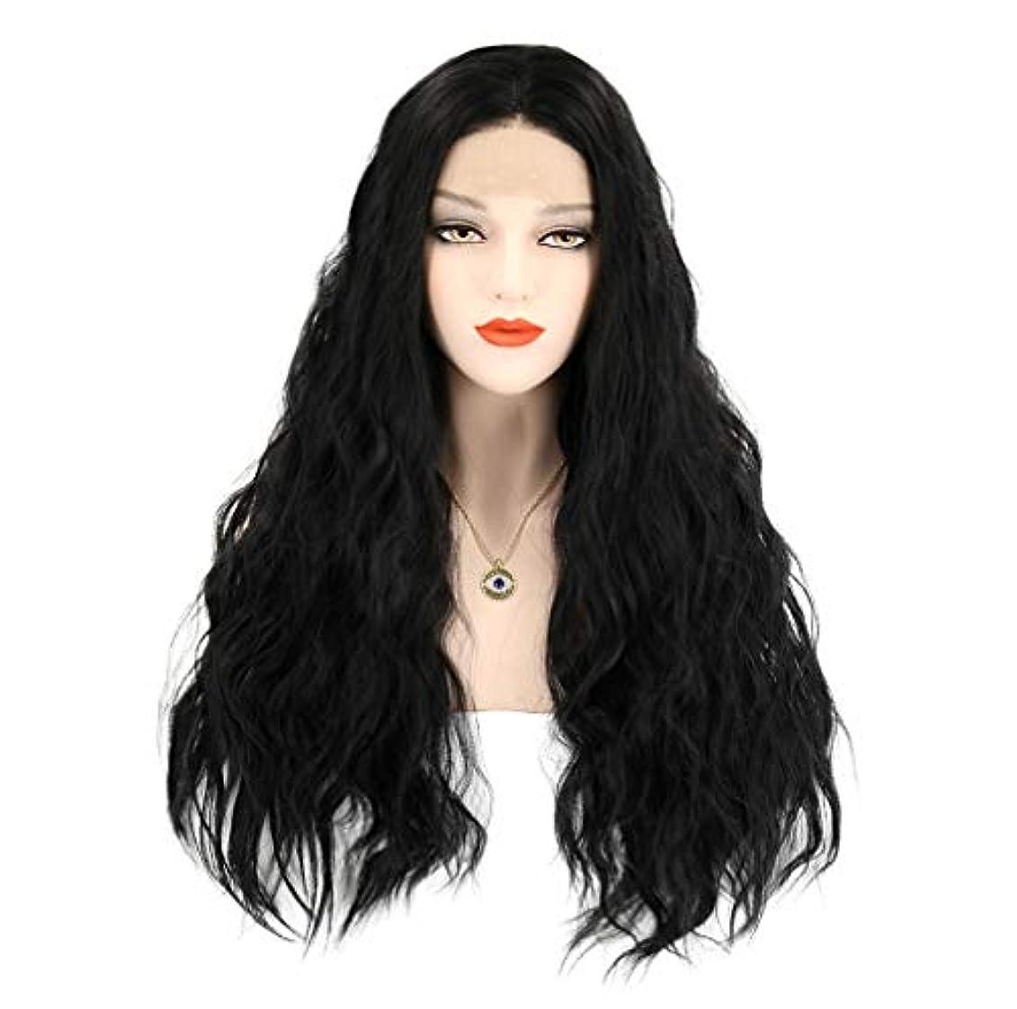 知覚する平野穿孔する女性かつらロングフロントレースかつら波状人工毛温度150%密度黒26インチ