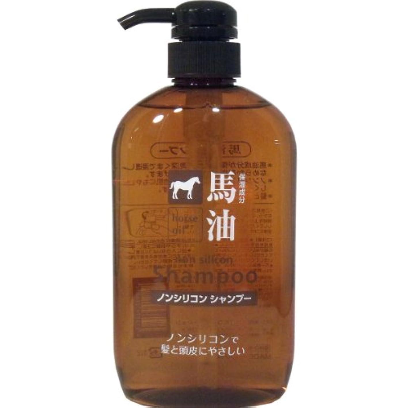 日焼け恒久的ある【まとめ買い】馬油(保湿成分)配合 ノンシリコンシャンプー×5個