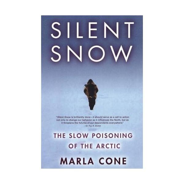 Silent Snow: The Slow Po...の商品画像