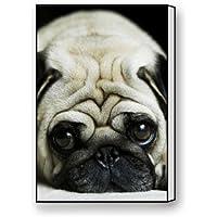 """ベストセラー、100%ブランド新しい、パグ子犬テーマキャンバス印刷も含ま(フレーム) -メジャーサイズ: 12( L ) """" X 18( W ) """" """""""
