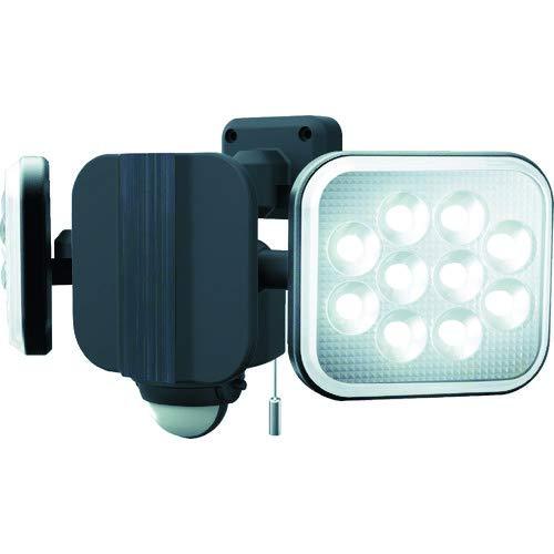 ダンケ 12W×2灯 フリーアーム式 LEDセンサーライト E40224