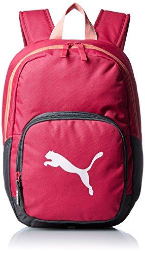 [プーマ] PUMA バックパック Primary Backpack 073825 02 (ローズ レッド)