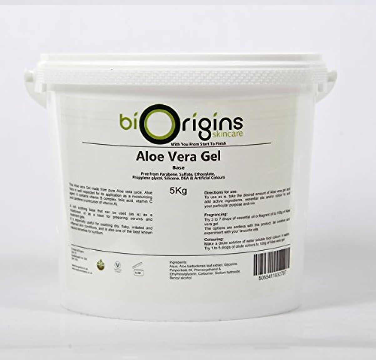 自発的約設定靴Aloe Vera Gel Skincare Base 5Kg