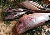 瀬戸の小魚セット♪(天然鯛・メバル2尾・きす4尾・穴子)