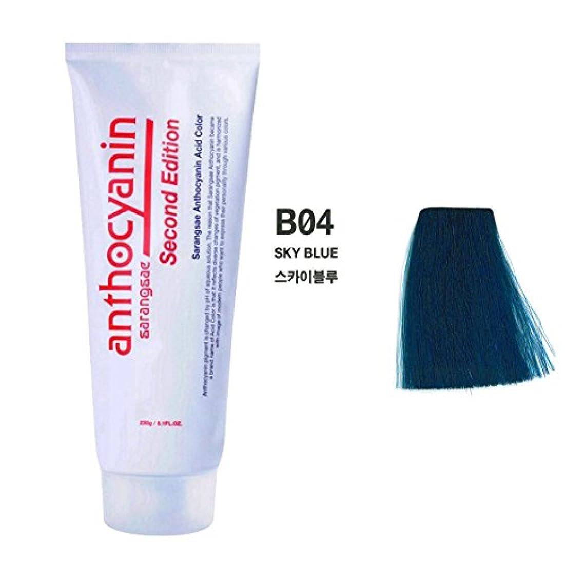 原子突破口多分ヘア マニキュア カラー セカンド エディション 230g セミ パーマネント 染毛剤 (Hair Manicure Color Second Edition 230g Semi Permanent Hair Dye) [並行輸入品] (B04 Sky Blue)