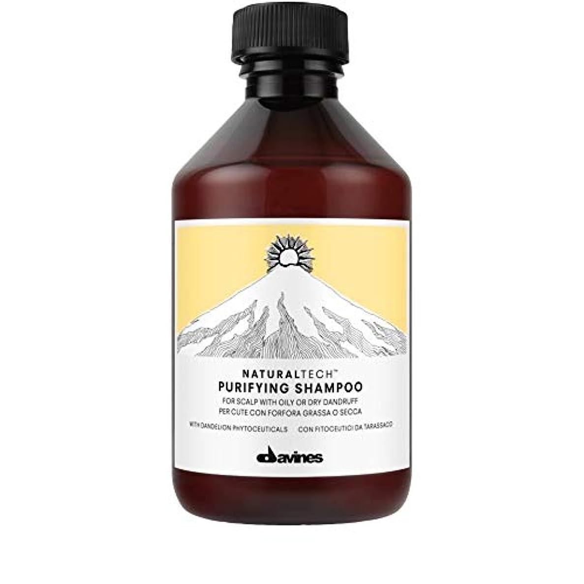 におい名誉ある不均一[Davines ] ダヴィネス浄化フケ防止シャンプー250Ml - Davines Purifying Anti-Dandruff Shampoo 250ml [並行輸入品]