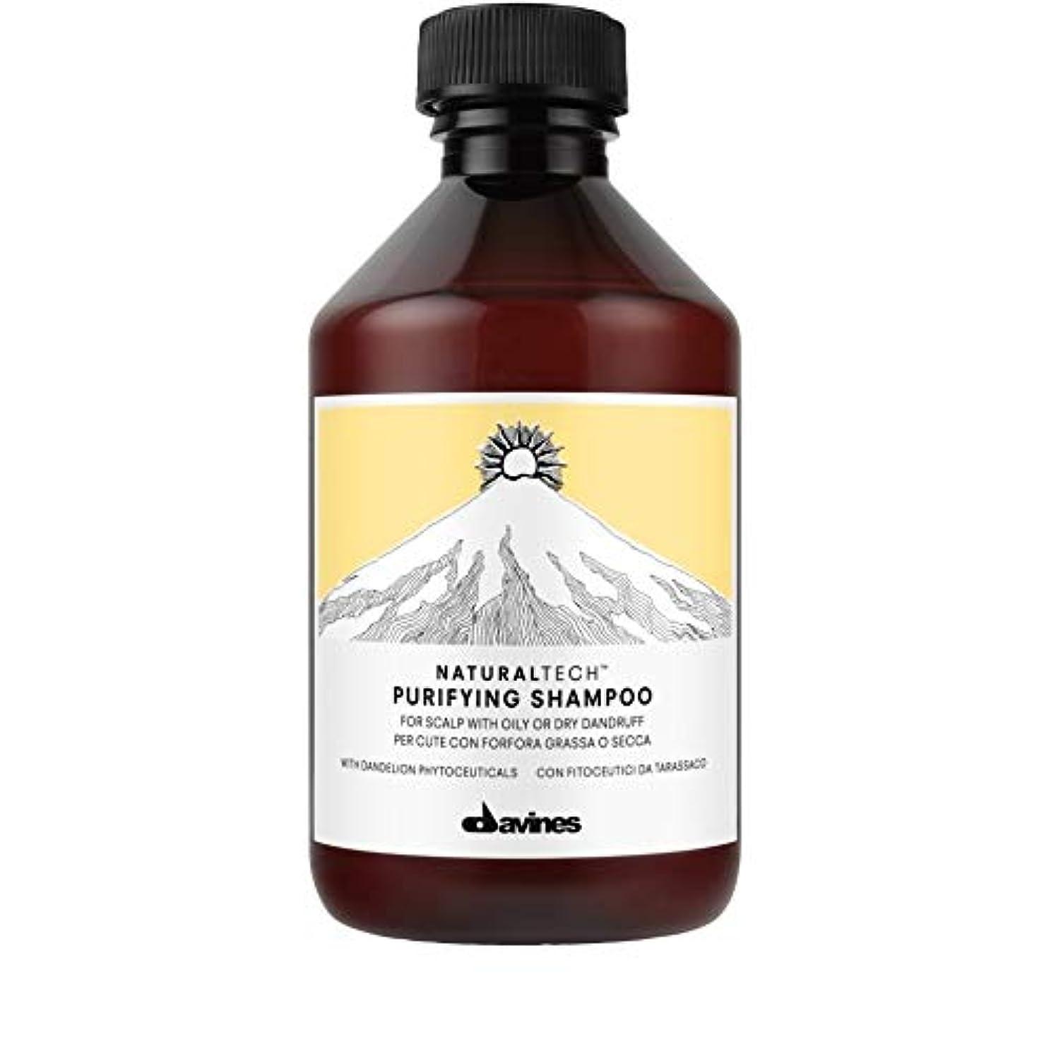 幻滅するピジン割り当てる[Davines ] ダヴィネス浄化フケ防止シャンプー250Ml - Davines Purifying Anti-Dandruff Shampoo 250ml [並行輸入品]