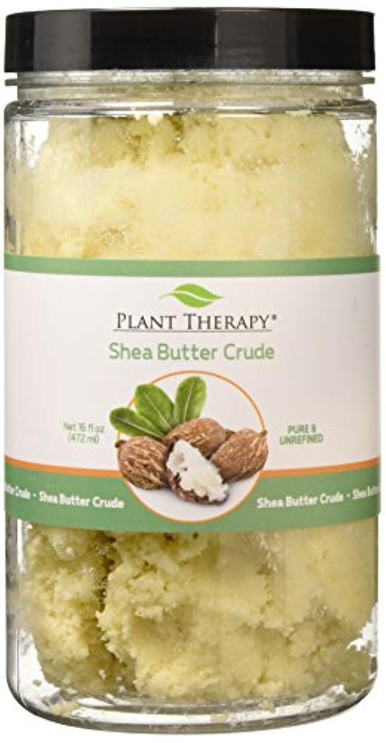 芽地上で求める植物セラピーシアバター原油。ローション、クリーム、バームや石鹸のための理想。 16オンス