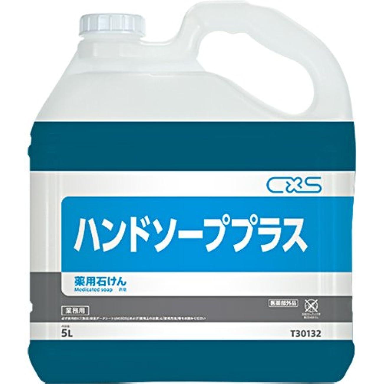 窒素適切においしいシーバイエス ハンドソーププラス 5L 2本セット