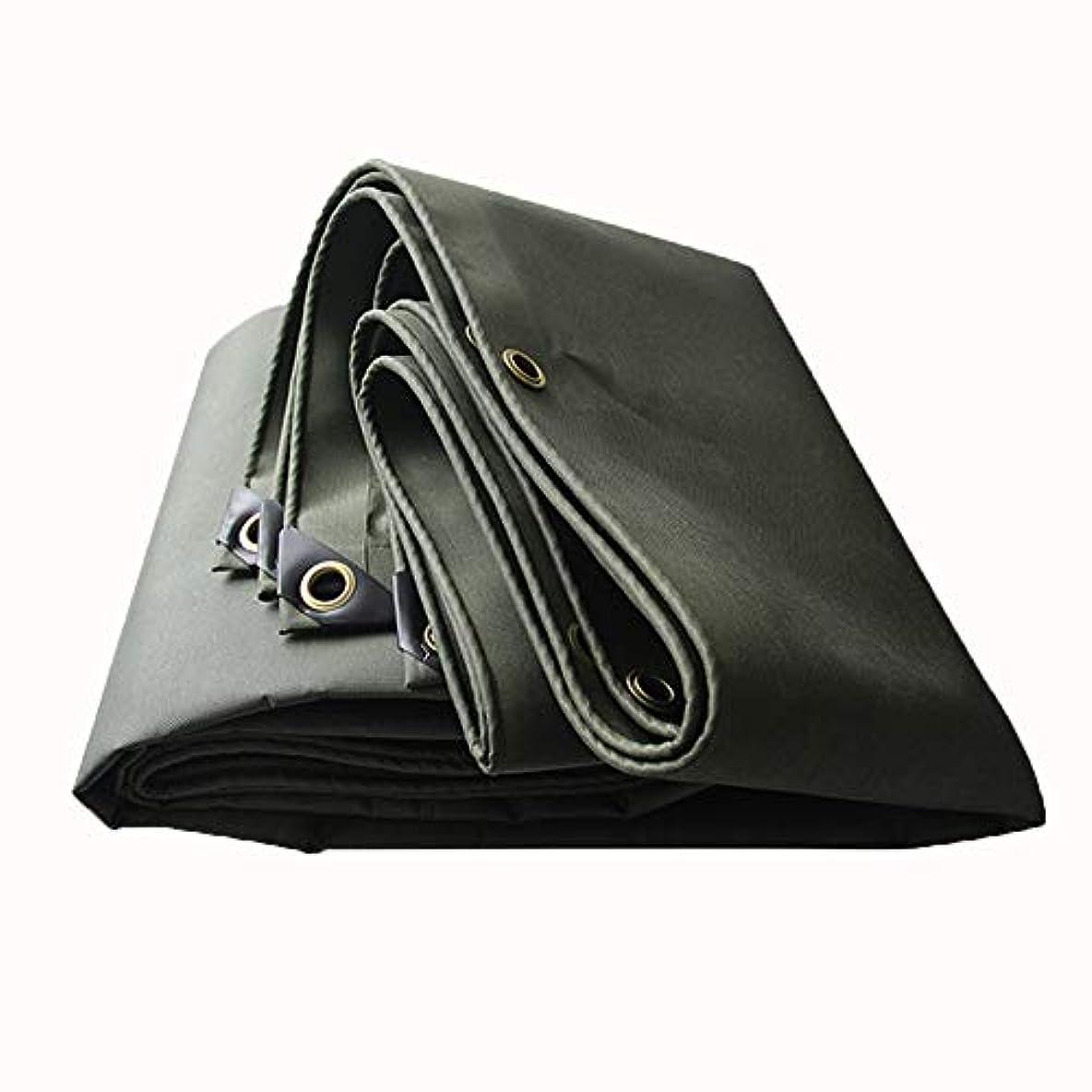 ガロン路地性格ターポリンキャンバス防水布リノリウムサンスクリーン布、580g / m2 ZHML (サイズ さいず : 3*4m)