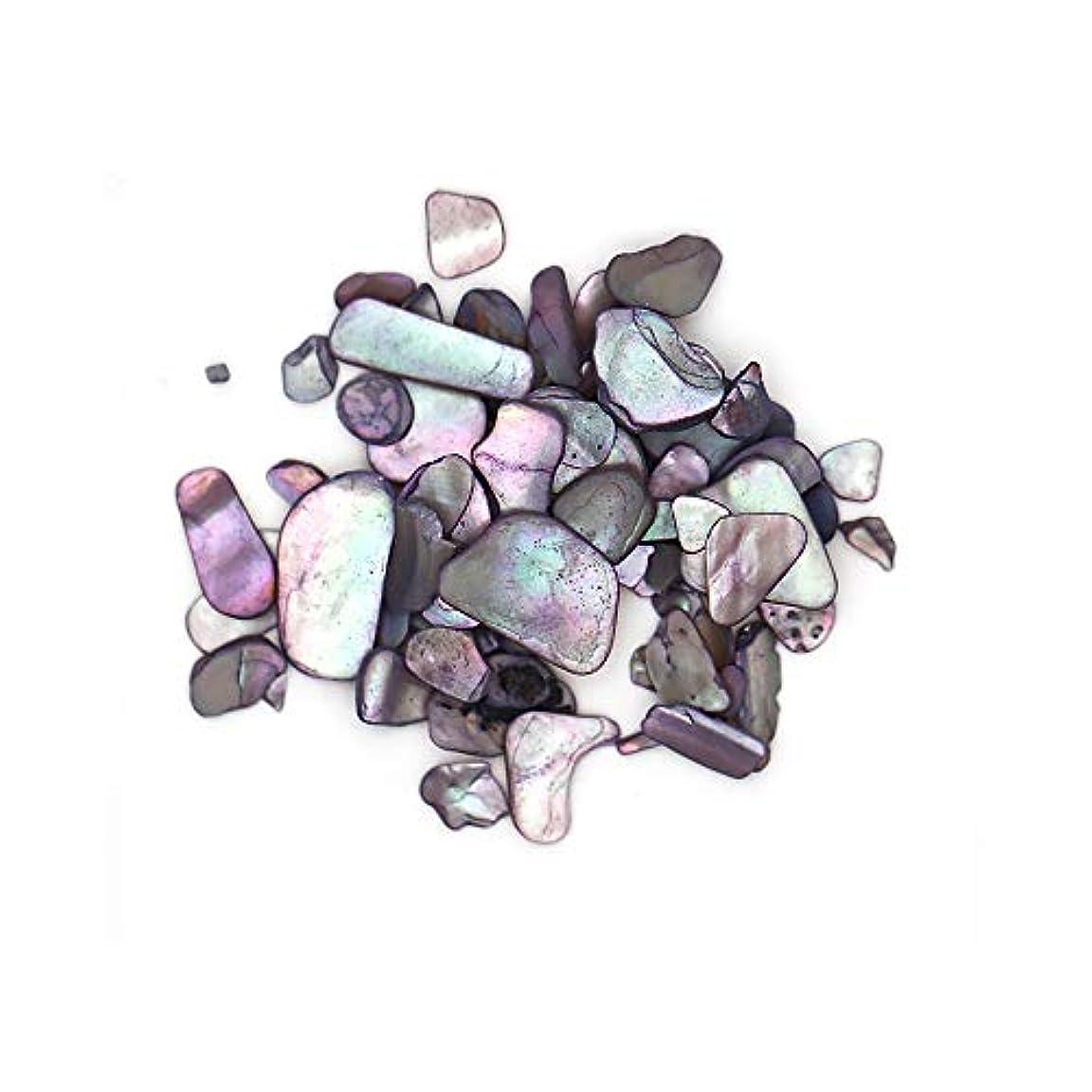 小石浸透するサーマルランダムシェルストーン【グレー】約3g シェルストーン クラッシュシェル ブロックシェル 天然