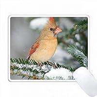 北の枢機卿、バルサムの冬の冬、マリオン、イリノイ、アメリカ。 PC Mouse Pad パソコン マウスパッド