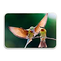 Niaocpwy Bee Eater Bird Couple Branch Doormat Indoor Outdoor Rug for Entrance、Door Floormat Scrap Scraper&Rubber Backing 60x40cm