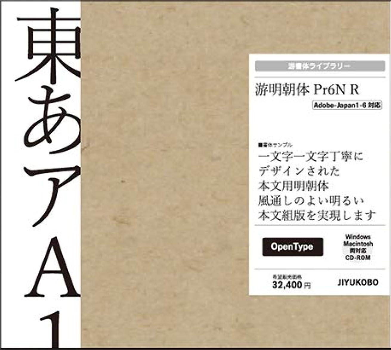 游明朝体 Pr6N R
