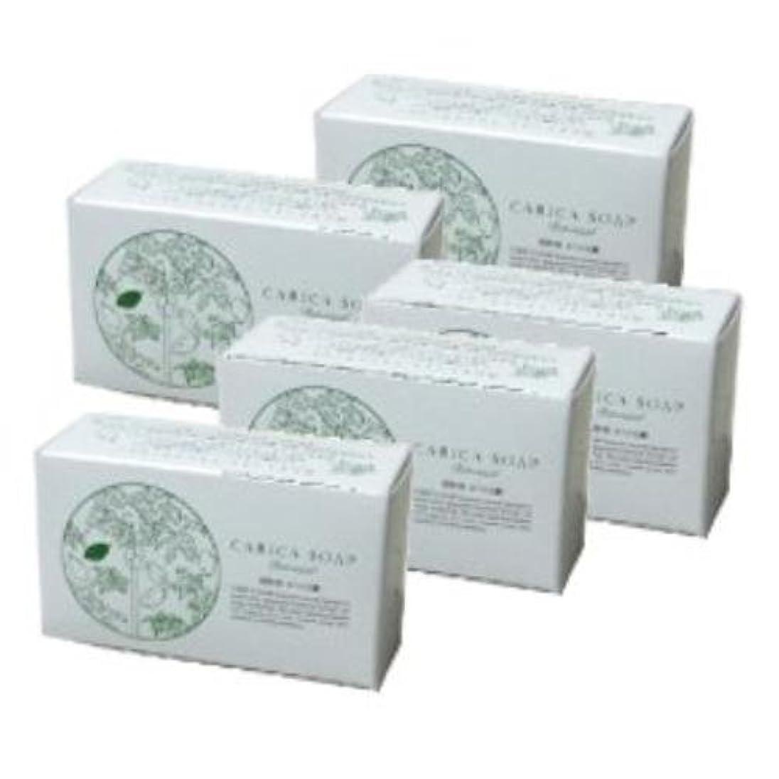 ぼかしパイプラインループ植物性カリカ石鹸 100g 5個セット