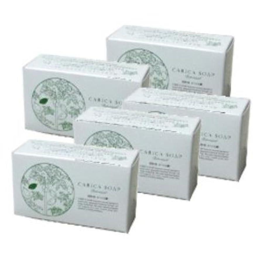 写真の授業料手首植物性カリカ石鹸 100g 5個セット