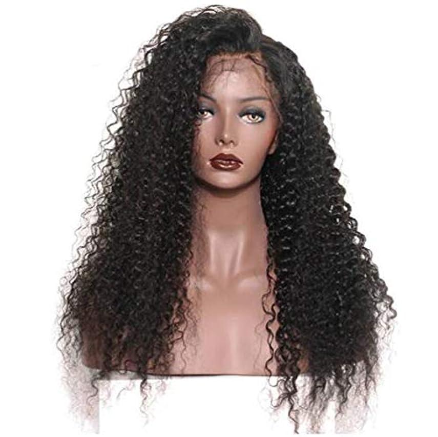 申請中赤道に同意する女性のレースフロントかつら人間の髪と赤ちゃんの毛合成ブラジルボディ波バージン毛150%密度黒24インチ