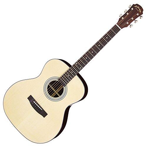 ARIA アリア アコースティックギター ソフトケース付 AF-205 N