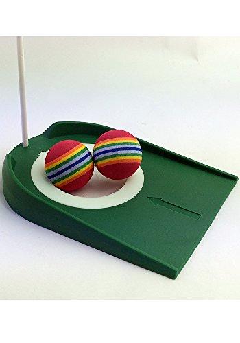 自宅 ゴルフ 練習セット カップとウレタンボール10個のセット