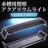 黒S Global Selection Store アクアリウムライト フラット LEDランプ LED300 5.5w 30cm-45cm (超白光300 5.5w)