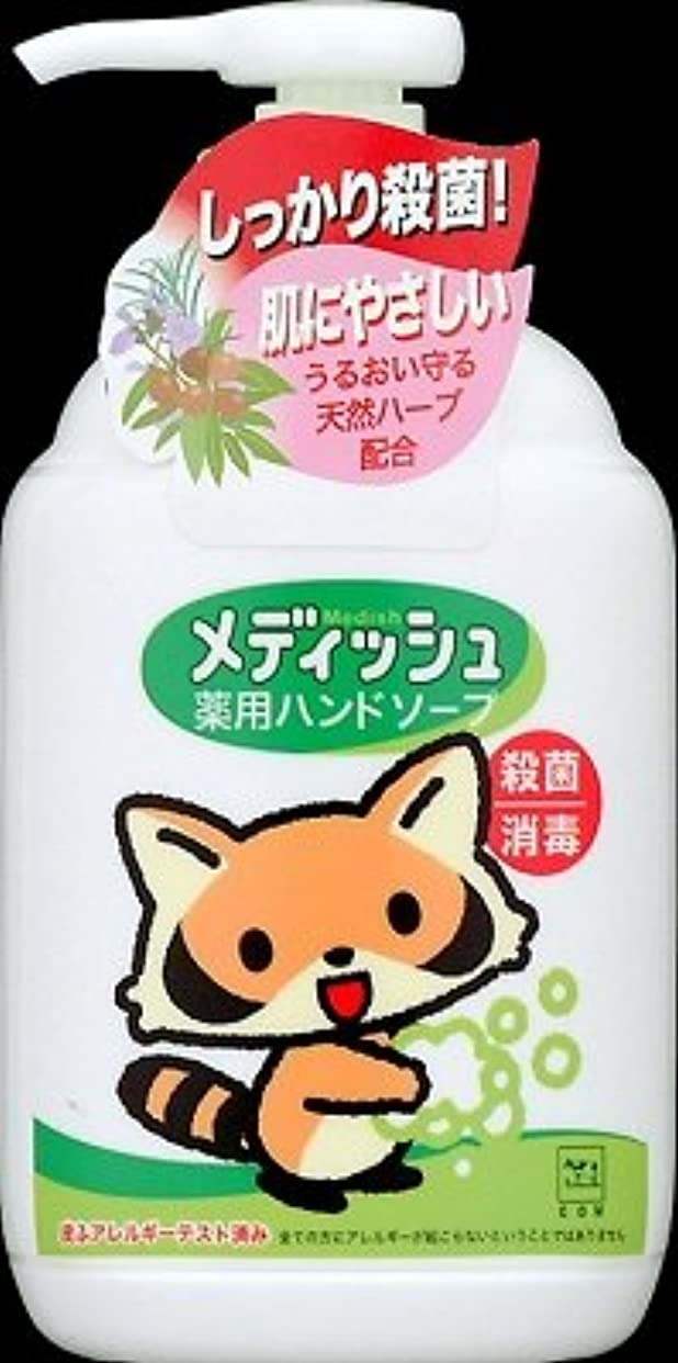 牛乳石鹸共進社 メディッシュ薬用ハンドソープ ポンプ250ml×24点セット (4901525955706)