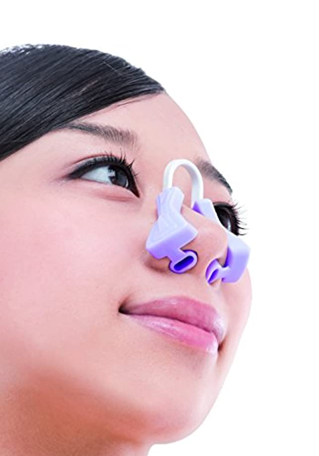 付ける石化するラオス人美鼻でナイト