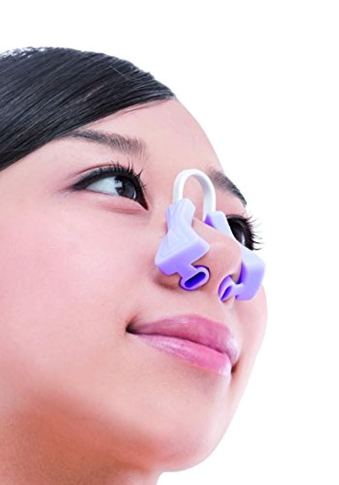 可愛い鏡ビクター美鼻でナイト
