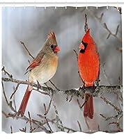 """鳥シャワーカーテンby lunarable、ペアのNorthern Cardinal Birds on a tree Ornithology Avian Wildlife Fauna、ファブリックバスルームDecorセットwithフック、Vermilionタンベージュ 69"""" W By 75"""" L sc_47242_long"""
