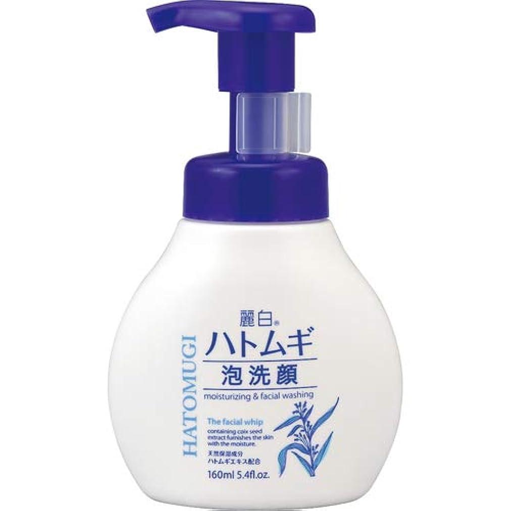 アクチュエータ舗装する縁麗白 ハトムギ 泡洗顔 本体 160mL