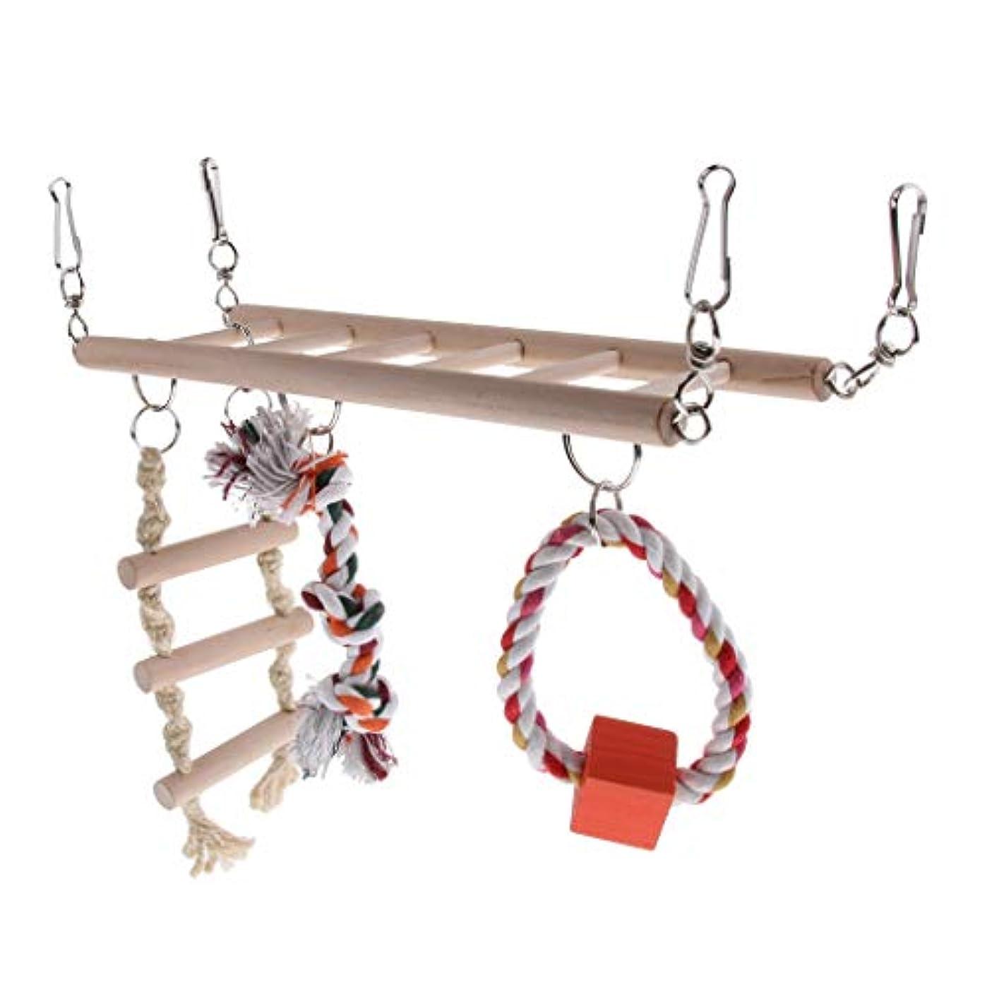 絶対に学部歯車ペット用品 面白い 鳥 おもちゃ 登る はしご おもちゃ オウムラダー玩具