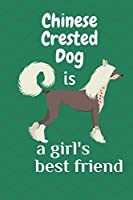 Chinese Crested Dog is a girl's best friend: For Chinese Crested Dog Fans