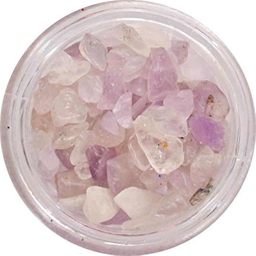 シャイニング省略燃やす天然石のネイルパーツ Natural Stones 丸いプラスチックケース入り (ライトアメジスト風)