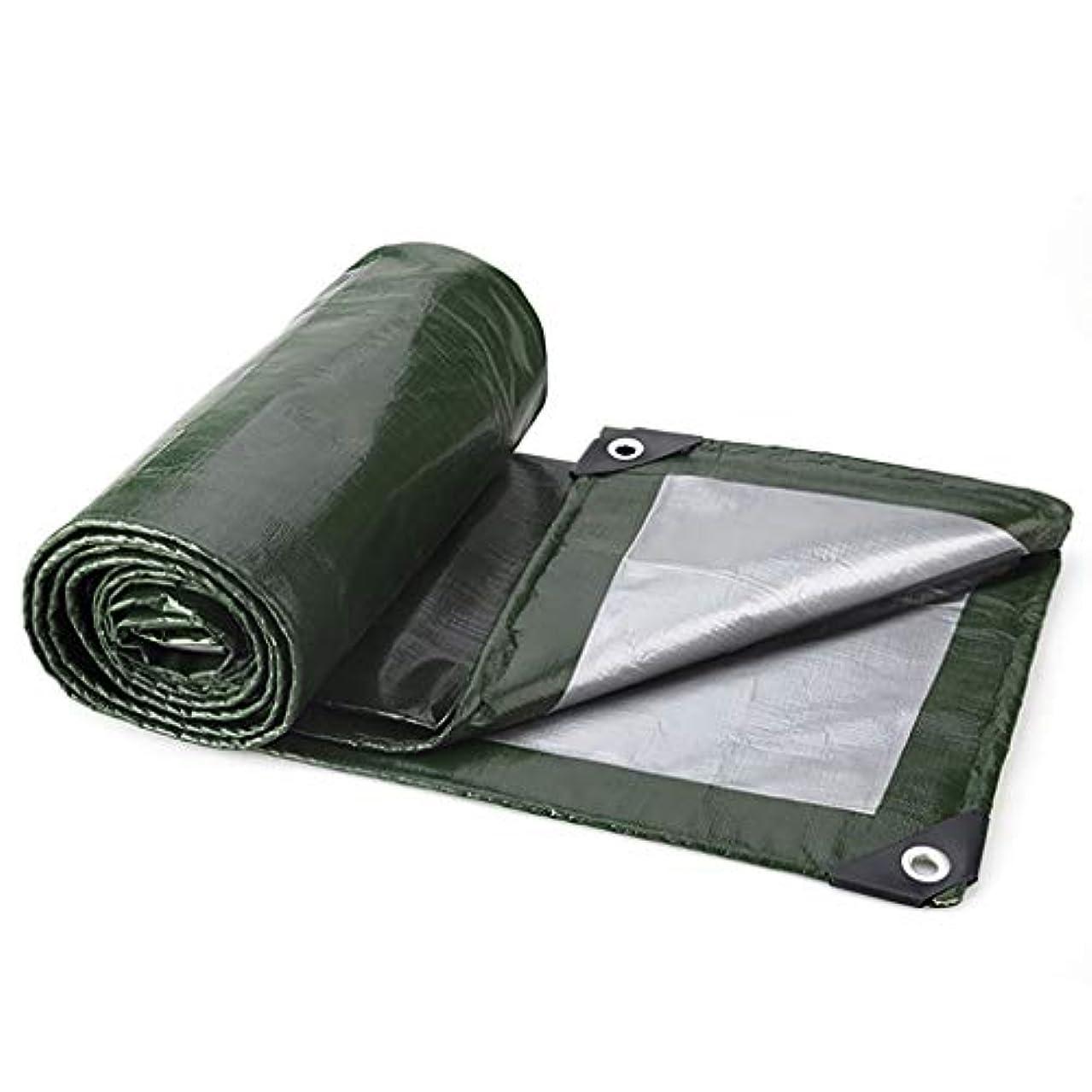 に対応ヘア設計タープ 風雨を防ぐキャンプ用防水シート、ポリプロピレン製防水シート、防水加工、酸化防止、軽量 テント (Color : Green and Silver, Size : 4m×4m)