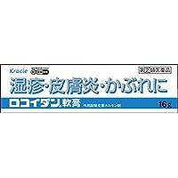 【指定第2類医薬品】ロコイダン軟膏 16g ※セルフメディケーション税制対象商品