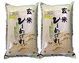 福島県会津産 玄米 石抜き処理済 ひとめぼれ 10kg(5kg×2袋) 平成28年産