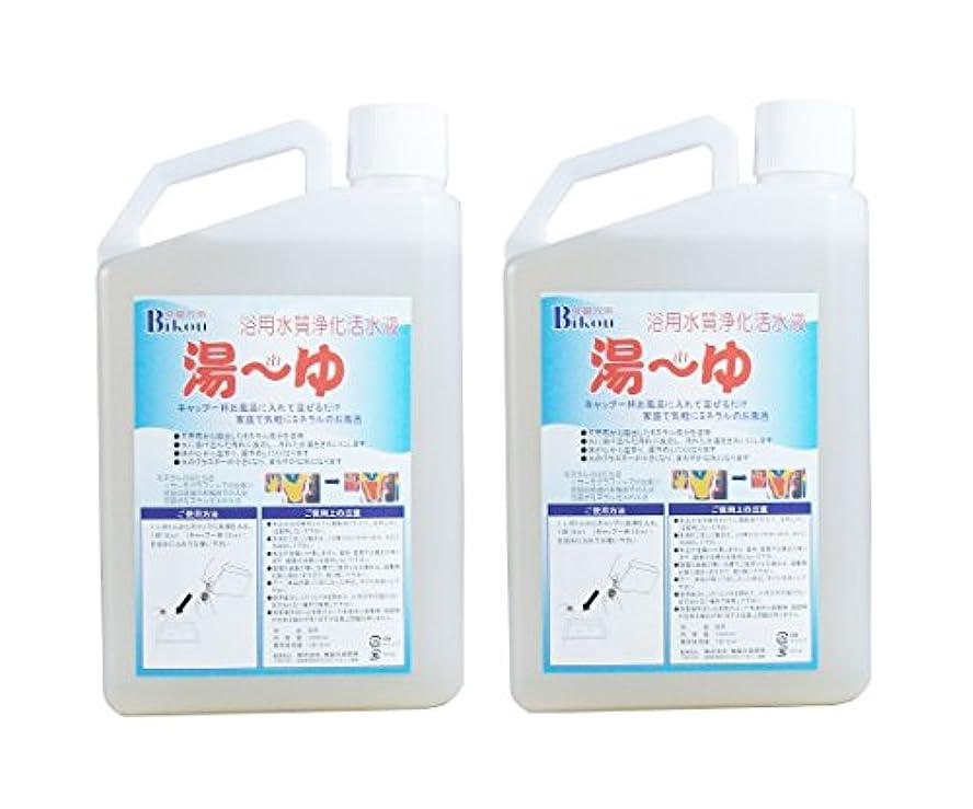 ニンニクサイバースペース秀でるBikou 浴用水質浄化活水液 湯ーゆ 2本組(1000ml×2) 24時間風呂用入浴剤