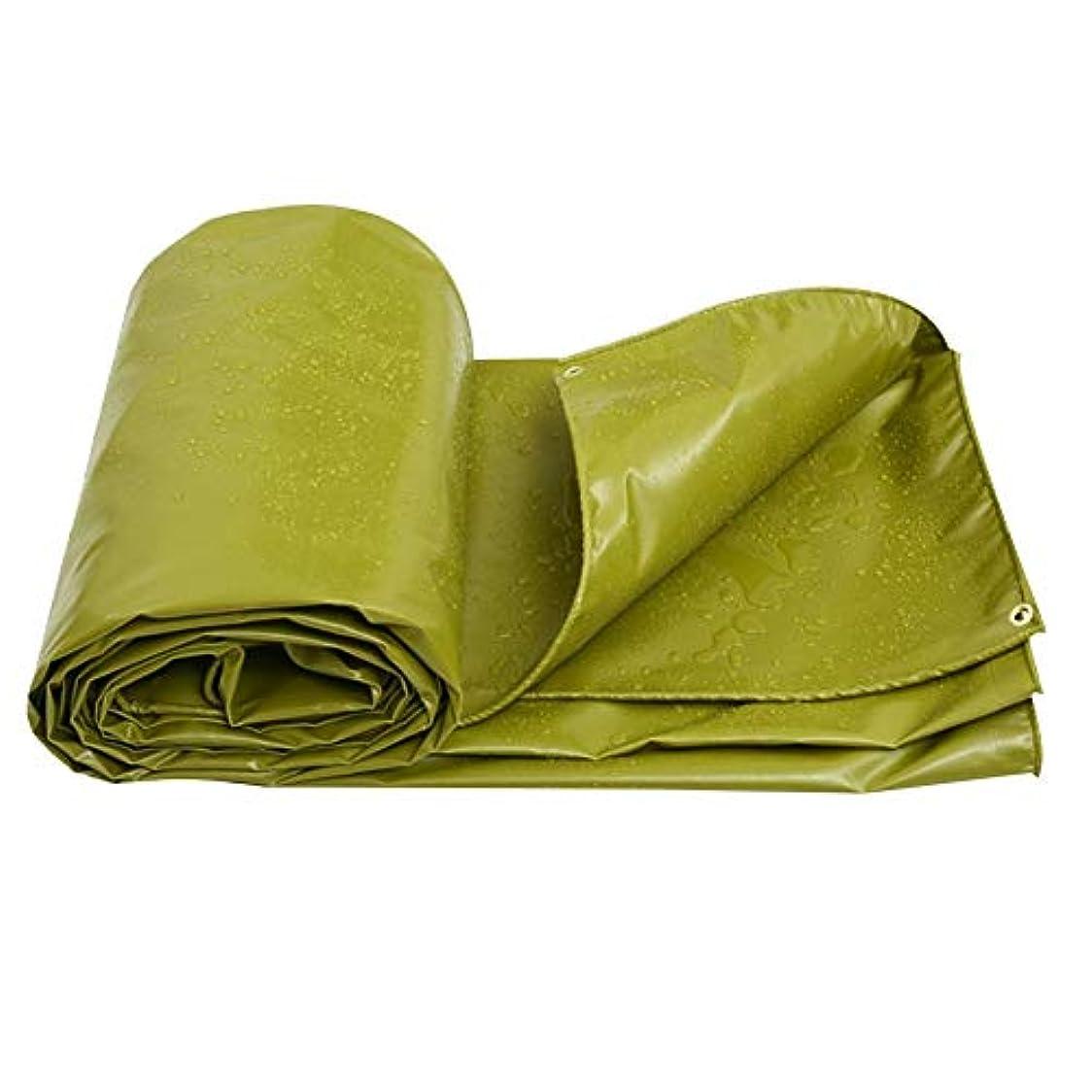 戻す環境に優しい真実に防水ターポリン、防水シート防水オーニングテントPVC両面防水ヘビーデューティアウトドア、550G /M² GAOFENG (色 : 緑, サイズ さいず : 2*3M)