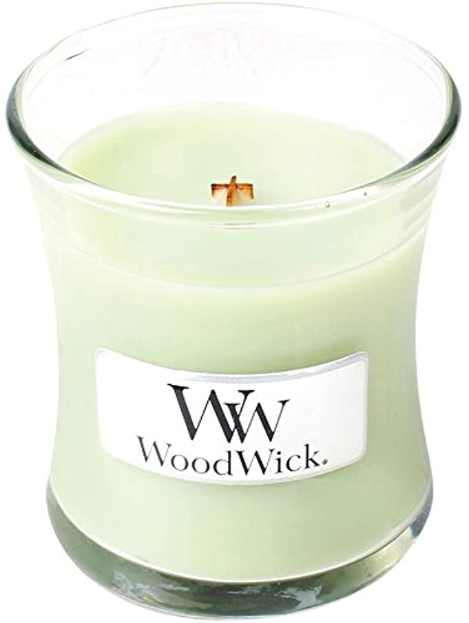 リーズ信頼性のあるプラスチックWood Wick ウッドウィック ジャーキャンドルSサイズ ライムジェラー